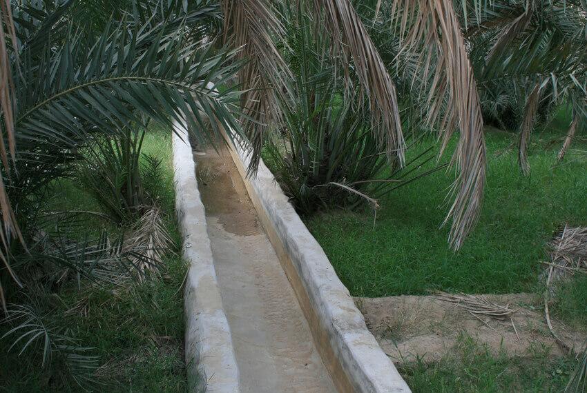 Die Afladsch – so werden die traditionellen Bewässerungskanäle genannt.