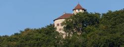 Arlesheim Schloss Reichenstein